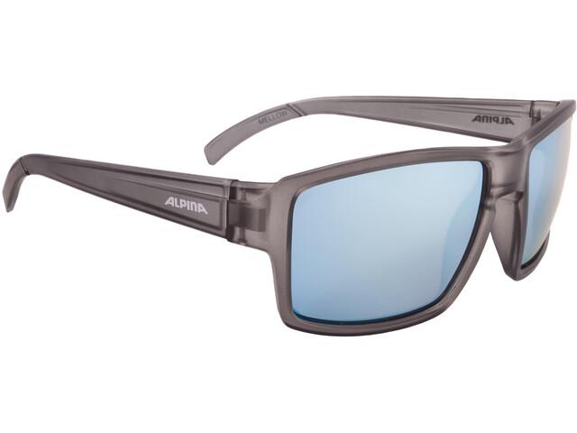 Alpina Melow Bril, grey transparent matt
